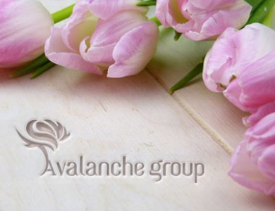 Компания «Avalanche Group»