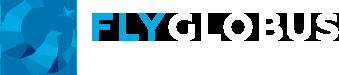 Чартерные рейсы «Flyglobus»