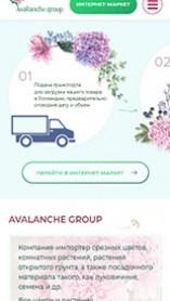 Компания «Avalanche Group»
