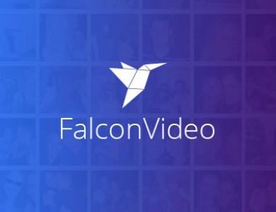Видеосток «Falcon Video»